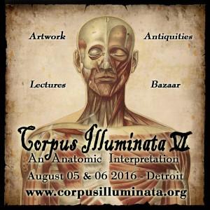corpusilluminata6_avatar
